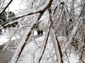 Ice storm leaves half a million without power this Christmas in US and Canada