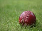 IPL: Inspiring the youth to bat for a career in cricket