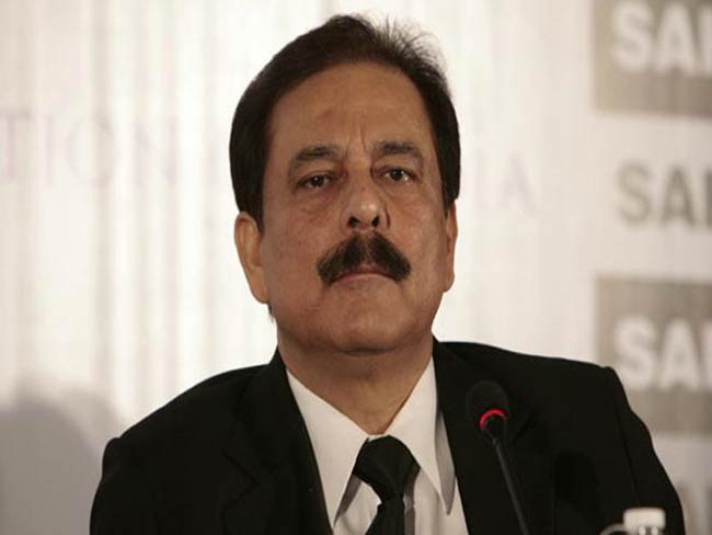 Sahara Chief