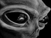 Meeting a real alien 'possible' in 20 years, say astronomers
