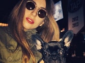Lady Gaga's dog Asia banned from Asia
