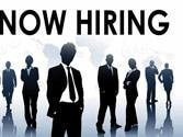 Ulhasnagar Municipal Corporation (UMC), Maharashtra, walk-in-interview for recruitment 2014