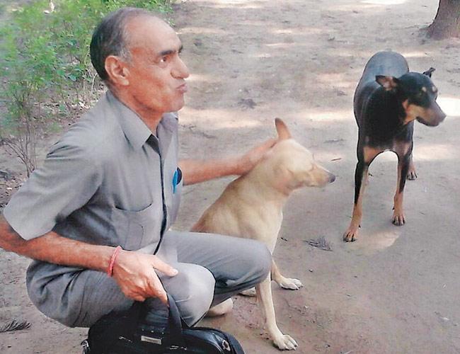 L.R. Yadav with stray dogs