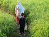Indians can afford toilets but are reluctant to deal with full latrine pit