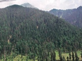 Country loses huge chunk of forest to infrastructure projects