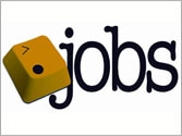 Vacancy for the post of software engineer, programmer at Wordpress