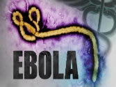 Ebola crisis: WHO approves a new 15 minute test to detect the disease