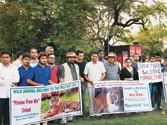 Killer tiger secretly shifted from Ranthambore