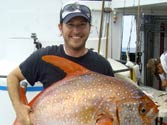 World's first warm-blooded fish