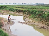 Environmental experts concerned about Yamuna floodplains constructions
