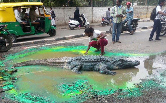 b0fd5743c591 Bangalore artist makes crocodile swim in pothole - India News