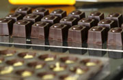 Nutritious diet, chocolates can boost sperm counts