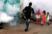 Dengue, malaria prevention programmes on hold in Gurgaon