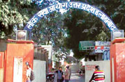 Now UP's Vyapam bomb set to explode as PIL claims 56 of 86 SDMs were selected from one caste