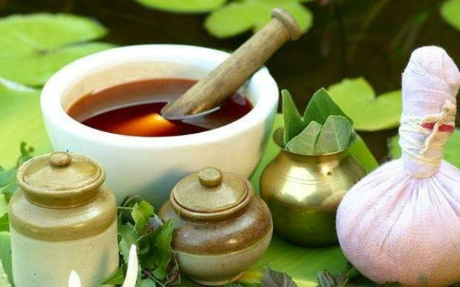 8 medicinal plants that can cure you and can be found