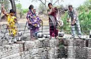 From Maharashtra to Telangana, farmers bear the brunt as drought looms large
