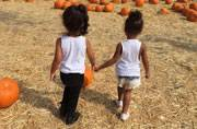 Kim Kardashian shares adorable picture of daughter at a pumpkin patch
