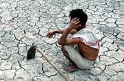 State govt declares 50 districts in UP drought-hit