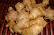 From flavouring agent to arsenal against cold, ginger is your best bet to stay healthy