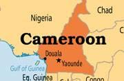 Cameroon's army kills 100 members of Boko Haram's group