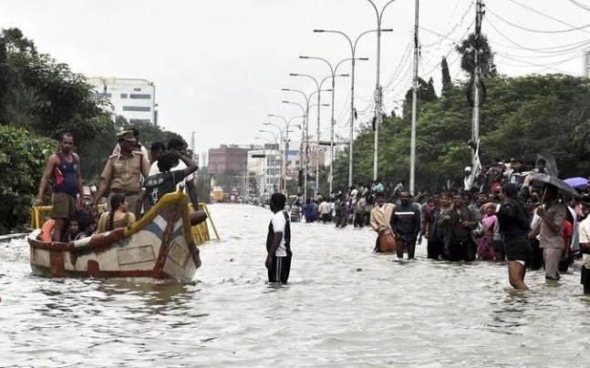Chennai floods. Photo: PTI