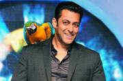Salman Khan to spice up grand finale of Power Couple?