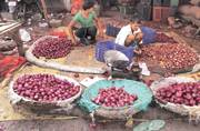 Onion overdose cheers buyers, upsets farmers