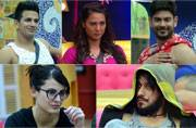 Poll: Who will win Bigg Boss 9?