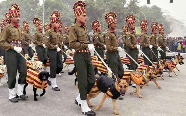 Guard Dog House India