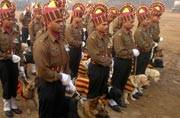 This Republic Day, Rajpath goes to the dogs!