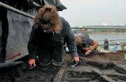 Bronze Age settlement found 90 kilometres from London: All you need to know