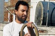 Wolf snake adds drama to babus' day at work in Anand Vihar