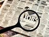 Central Employment Exchange releases job notification: Apply before February 15