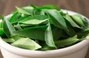 This is why your grandmother loved neem; the healing agent's top 5 benefits