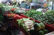 Jat quota row: Veggies price soar, milk supply under stress in Delhi-NCR