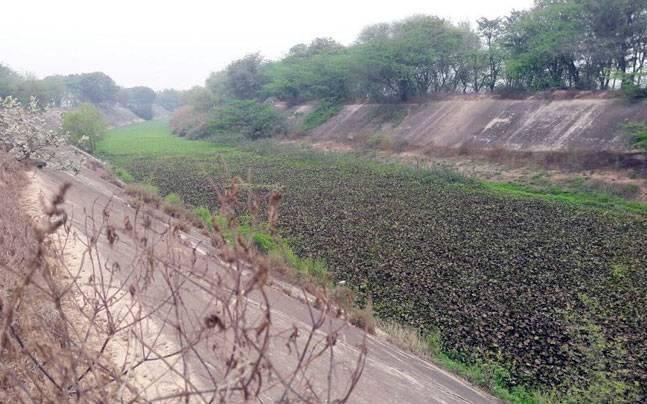 Sutlej-Yamuna Link (SYL) canal
