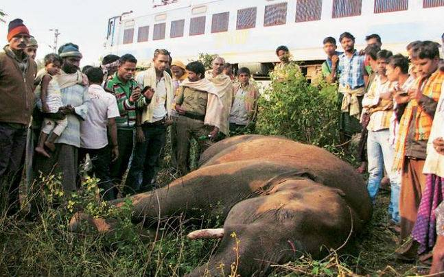 Students develop tech to curb jumbo mishaps on tracks