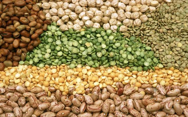 The United Nation declares 2016 as the International Year of Pulses: