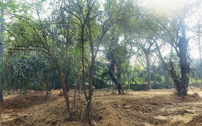Teen Murti Bhavan complex