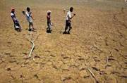 Techies raise funds to help drought-hit Vidarbha farmers