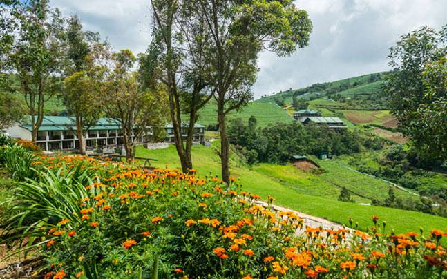 Destiny Farm, Ooty. Picture courtesy: LittleEarth.in