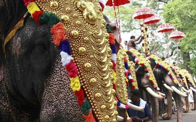 If the directives were to be followed, they would not be able to parade the elephants for the kudamattam
