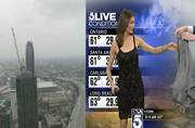 Beta, sweater pehno: US weather presenter made to cover up live on TV