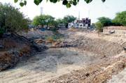 Delhi government gets cracking on cleaning, beautifying pond