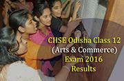 CHSE Odisha Class 12 exam 2016 result declared: Check out your scores at orissaresults.nic.in