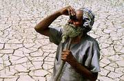 World day to combat desertification and drought: Know how we are doomed