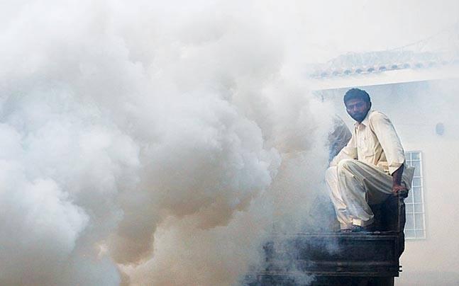 fumigation drive