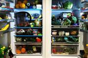 Is it actually safe to freeze food? Experts weigh in