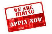 Want to work for ECHS? Apply now for 11 Medical Specialist and other Posts