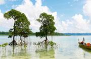 This is how you can spend 7 days in Andaman and Nicobar Islands